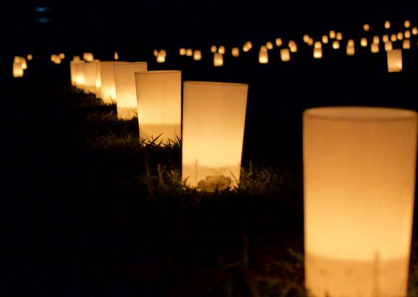 古都、奈良の夜を彩る一大イベント 『なら燈花会 2016』